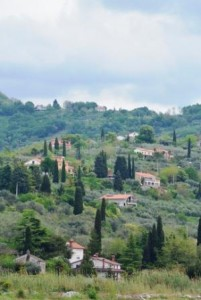 Podorose paysage mediterranée